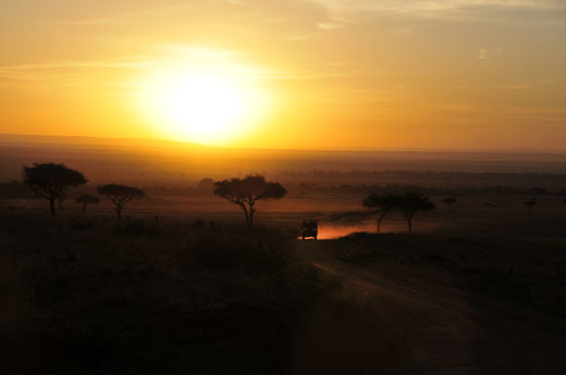 Heading home after a day on the Serengeti