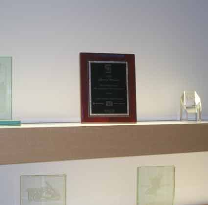 2008 Award of Distinction: Booth Design Concept, Lightfair 2008