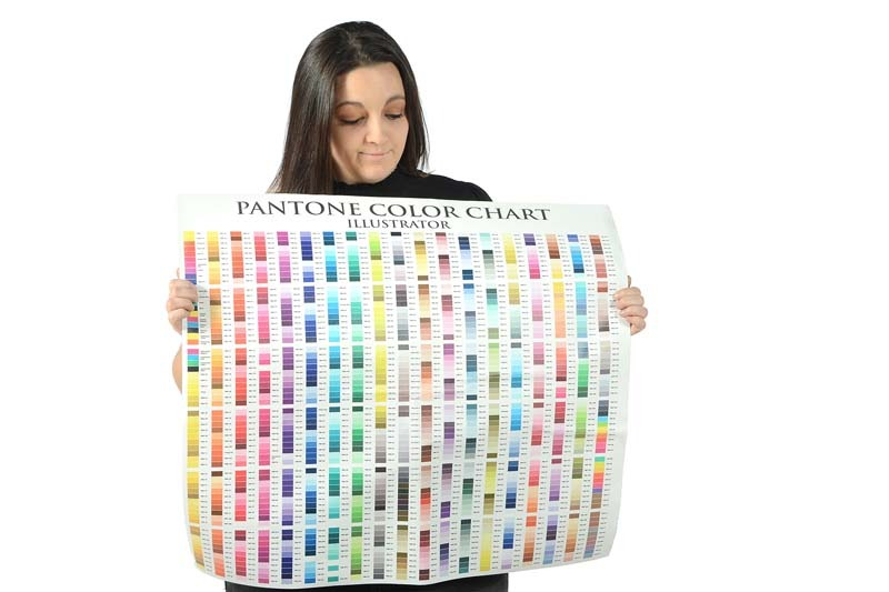 Hannah Williams holding pantone color sheet